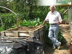 Ügyes komposztálás a kertben - YouTube Garden Plants, Vegetables, Gardens, Youtube, Vegetable Recipes, Garden, Youtubers, Veggies, Garden Types