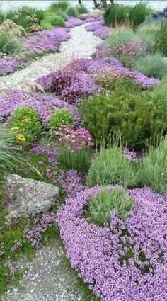 Backyard Garden Inspiration and Garden Landscaping Layout. Gravel Garden, Garden Paths, Garden Shrubs, Herb Garden, Garden Beds, Sunken Garden, Garden Care, Garden Grass, Hillside Garden