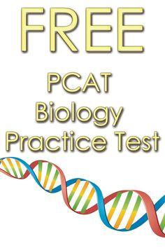 Possible Pcat Essay Topics   Essay for you Smart Trading     sample dbq essay questions