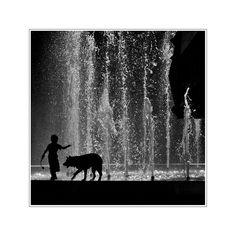 Peter und der Wolf von Ralf J. Diemb