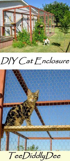 So bauen Sie ein Outdoor-Katzengehege oder Catio - outdoor cat enclosure - Chat Outside Cat Enclosure, Diy Cat Enclosure, Pet Enclosures, Reptile Enclosure, Gatos Cat, Cat Fence, Outdoor Cats, Cat House Outdoor, Outdoor Ideas