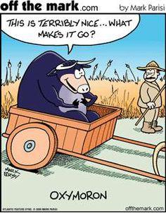 a different kind of oxymoron Humor Funny Cartoons, Funny Comics, Grammar Jokes, Chemistry Jokes, Science Jokes, Teaching Grammar, Teaching Reading, Learning, Memes Humor