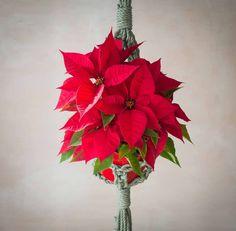 Hoy he estado preparando cositas para las navidades del 2018. Como lo oyes, aquí una tiene que planificar algunas cosas a unos cuantos meses vista. Y con esto, hoy empiezan mis vacaciones 🌟 Para mí terminar el año siempre es algo muy especial.   Me adentro muy al fondo de mí misma para agradecer todo lo que me ha traído el año que se termina y escucho a mi corazón para ver qué es lo que quiere el año siguiente y así poderme organizar bien para poder conseguirlo 🙏  Las que lo hacéis ya…