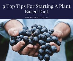 9 Top Tips For Starting A Plant Based Diet - We Made This Life