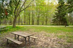 Bass Lake Provincial Park Ontario Canada Ontario Parks, Bass Lake, Outdoor Furniture, Outdoor Decor, Canada, Image, Backyard Furniture, Lawn Furniture, Outdoor Furniture Sets