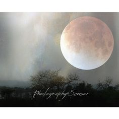 Magical Night Photography, Landscape Photography, African Bush, Full... ($15) ❤ liked on Polyvore featuring backgrounds