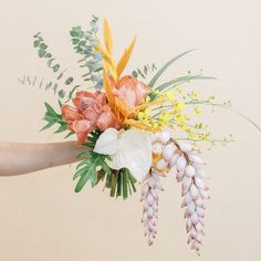 Some of 's latest magic ✨// Photos by Floral Wedding, Wedding Flowers, Bloom Blossom, Flower Aesthetic, Hawaii Wedding, Flowers Nature, My Flower, Pretty Flowers, Planting Flowers