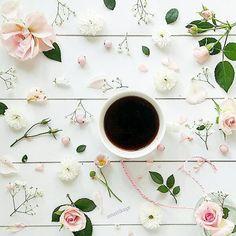 Guten Morgen  brrrrrr, hier hat's geschneit ❄️☃️❄️ erst mal n Käffchen ☕ und dann gleich zum Sport. Frostige Grüße aus dem weißen Norden ❄️❄️ Freezing greetings ❄️☃️❄️ #coffeeandseasons #coffeetime #breakfast_and_coffee #coffeeaddict #mypastelcharm #mymomentsofjoy #airy_pics #feelfreefeed #prettypastels #lovely_squares_1 #sunday_sundries #caughtflowerhanded #vscoflowers #pursuepretty #natureflatlays #wohnkonfetti #germaninteriorbloggers #roses #rosen #snap_ish #flowers #prettiestpastels #...