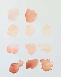 color study   Stella Maria Baer