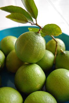 Limes | The Sugar Pixie