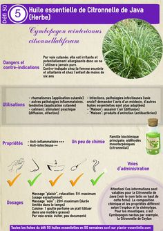 How to Use Aromatherapy to Heal the Mind and Body Essential Oils Guide, Young Living Essential Oils, Good To Know, Feel Good, Java, Diy Lotion, Homemade Cosmetics, Make Beauty, Medicinal Herbs