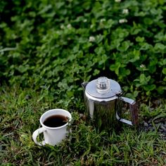 Coffee in the fields of green.