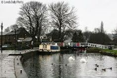 rodley leeds - Google Search August Bank Holiday, Bank Holiday Weekend, Local Pubs, Canal Boat, Leeds, Boats, Google Search, Places, Country