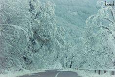 Wonderful winter in #Racha