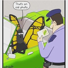 #lol #haha #funny #butterfly #caterpillar #car #drive #cop #photo #police…