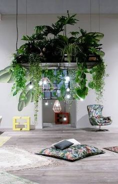Image result for amazing restaurant ceilings with flowers and plants