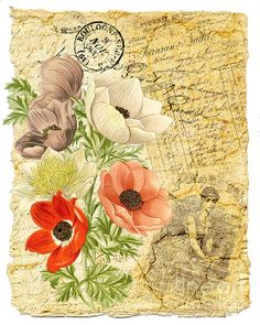 Vintage Poppies and Ephemera Greeting Card by Traci Vanover