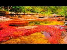 Strangest Weather on Earth: Only Rainbow River in the World! - YouTube