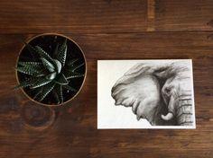 Elephant Charcoal Drawing PRINT on 5x7 Card - Elephant lover - Birthday Card - Nursery Art - Baby Shower Card - Wildlife Drawing - Black and White Art - Rachael Howatson Art