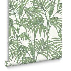 Honolulu Palm Vert Papier Peint
