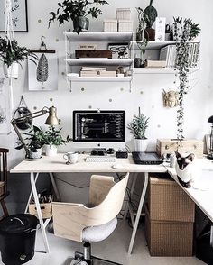 Polka dot workspace with plants and a little cat // via @workspacegoals on Instagram