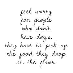 Dogs: the original vacuum cleaner. - - - - - - - #bbkustomkennels #wirekennelsareugly