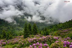Sis Dağı Fotoğrafı gönderen: Yüksel Yavuz