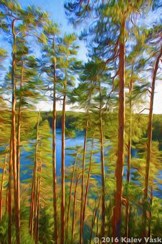 Lake Paukjärv in Põhja-Kõrvemaa Nature Reserve, Estonia. Created with Dynamic Auto Painter and Topaz Impression from photo by Kalev Vask