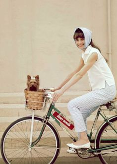 A bike ride can be just as fun for a dog as a walk...provided they can fit in the basket.