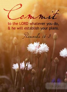 Dear God, thank you for a new day and a clean slate. May my focus each morning be set on you. When I worry about my plans, remind me you have my future in your safe and loving hands. Thank you for the wisdom you give me through your Word and the guidance of the Holy Spirit!