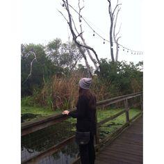beautiful___beginnings's photo on Instagram