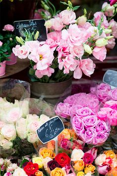 Consider fresh market flowers for your wedding bouquet. My Flower, Fresh Flowers, Beautiful Flowers, Spring Flowers, Flowers Bunch, Spring Bouquet, Bright Flowers, Spring Blooms, Cactus Flower