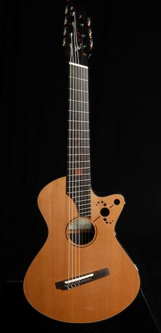 Greenfield Guitars The Perfect Acoustic