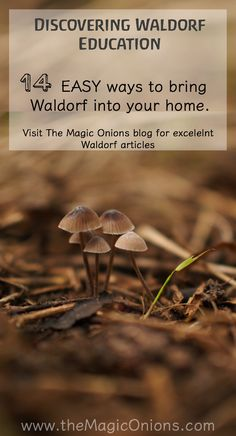 14 EASY ways to bring Waldorf into your home :: the Waldorf Home :: Discovering Waldorf Education :: www.theMagicOnions.com