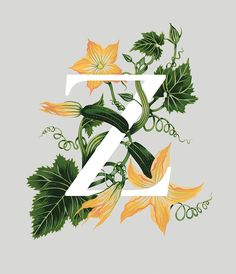 Charlotte Day | Central Illustration Agency #lettering #typography #charlotte day #illustration #illustrator #alphabet #botanical #painting #watercolour #gouache #horticulture #z #foliage #flowers #decorative #painting