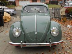 Volkswagen Models, Volkswagen Bus, Old Bug, Green Beetle, Vw Beetles, Motor Car, Colorful Interiors, Antique Cars, Windows