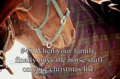 When your family finally buys the horse stuff on your Christmas list.
