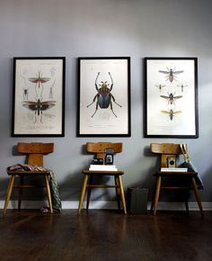 Vintage Printable website allows you to print free clip art like seen here Natural History 7
