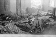 Hiroshima Bombing, Nagasaki, Naver, World, Painting, Painting Art, Paintings, The World, Painted Canvas