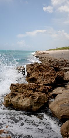 "Blowing Rocks Preserve in Jupiter Island - The Blowing Rocks Preserve is a 73-arce area of pristine Jupiter Island land. It reaches all the way to the famous ""blowing rocks"" and beach where you can watch the waves crash up through the rocks and caves. #jupiterisland #blowingrocks #jupiterfl"