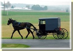 Go to the Amish Store in Montgomery, or in the Valley. Drive carefully.