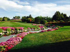 View of the Creek Garden and the Vista Mound Garden at Ashton Gardens.