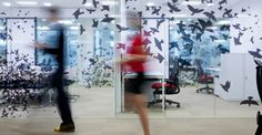 Someone hasn't left the windows open. it's just decorative window film featuring a flock of birds! Interior Work, Office Interior Design, Office Designs, Interior Architecture, Office Wall Graphics, Window Graphics, Environmental Graphic Design, Environmental Graphics, Workspace Inspiration