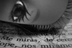 """Ciclope. """"Me miras, de cerca me miras, cada vez más de cerca y entonces jugamos al cíclope, nos miramos cada vez más de cerca y nuestros ojos se agrandan, se acercan entre sí, se superponen y los cíclopes se miran, respirando confundidos (...)"""". Julio Cortázar"""