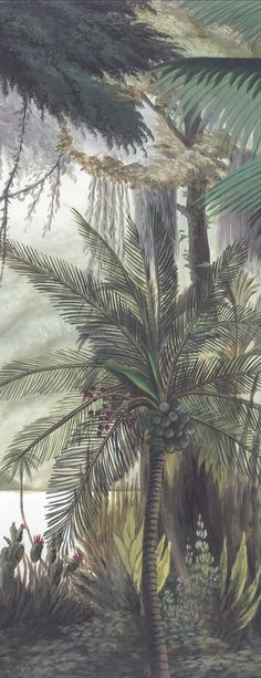 Papier peint panoramique Ananbô Les sources de l'Orénoque grisaille Interior Wallpaper, Wall Wallpaper, Wallpaper Ideas, Grisaille, Florida Home, Botanical Prints, Exotic, Awesome, Floral