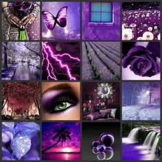 Purple is my favorite color, so I will be adding beatiful purple images that I find.
