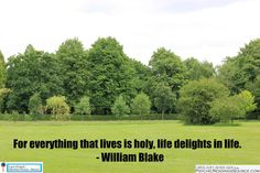 For everything that lives is holy, life delights in life. - William Blake - http://www.psychicreadingssource.com/for-everything-that-lives-is-holy-life-delights-in-life-william-blake/