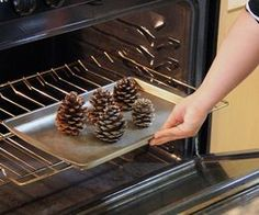 Making Cinnamon Scented Pine Cones...