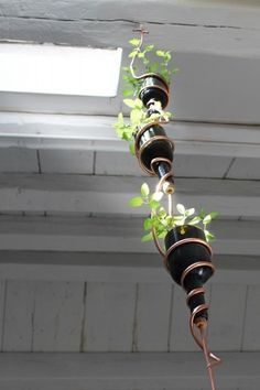 Make a suspended planter out of two empty bottles and solid copper wire to connect the two.
