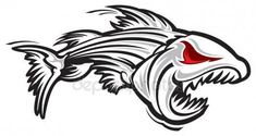 Fish skeleton illustration on white background